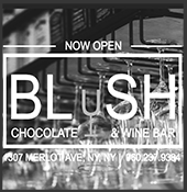 Blush NYC Fictional Website