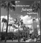 University of Florida Campus InDesign Brochure InDesign Project